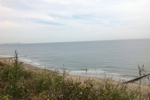southbourne 7