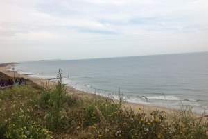 southbourne 6